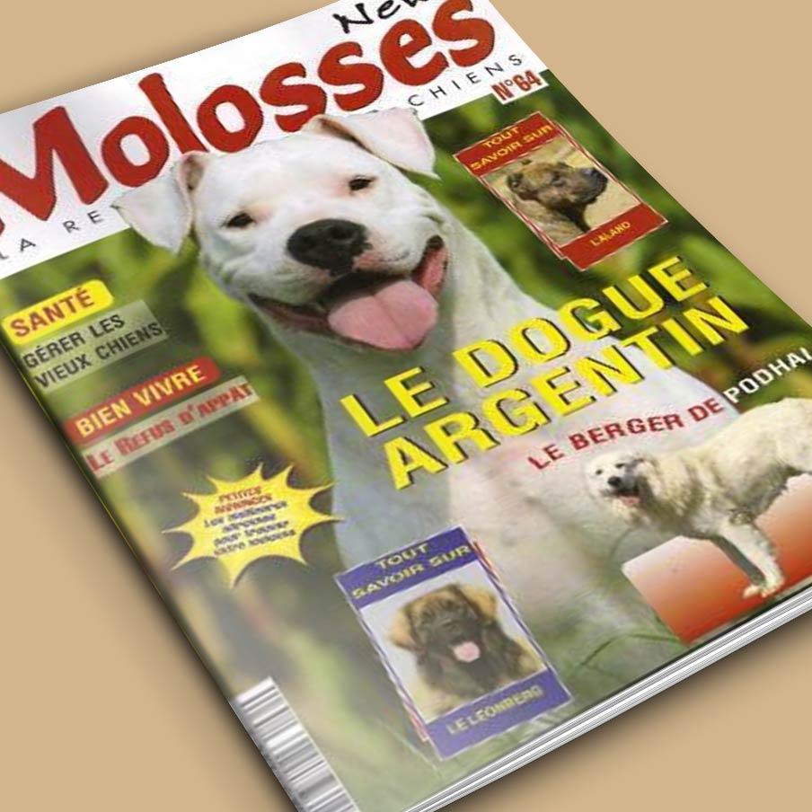 Molosses New N°64