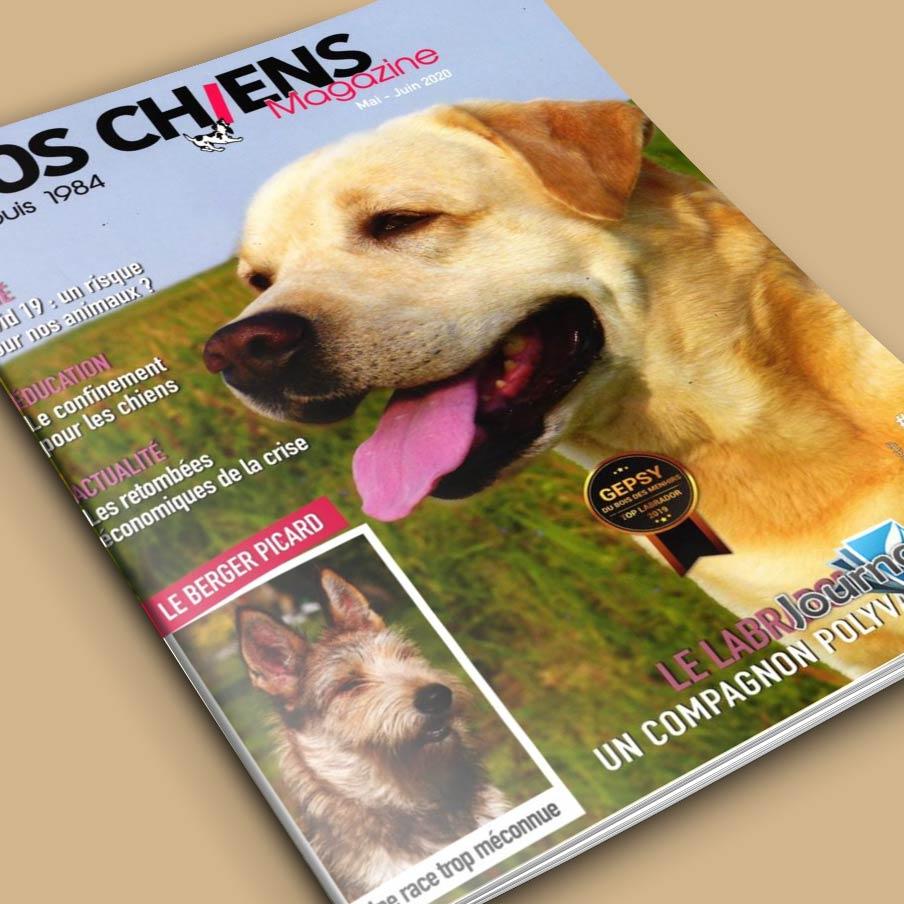 Vos Chiens Magazine 361